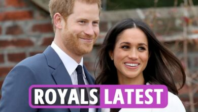 Photo of Royal Household information newest – Prince Harry & Meghan Markle DEMAND main covid vaccine modifications throughout New York go to